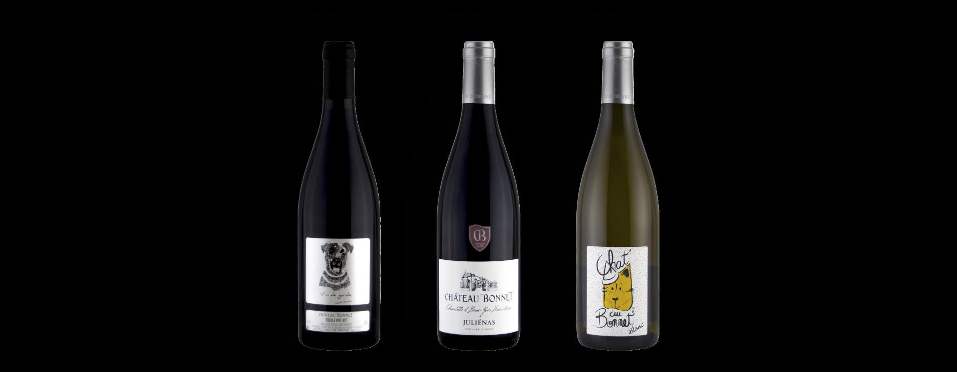 bouteilles-de-vin-domaine-beaujolais