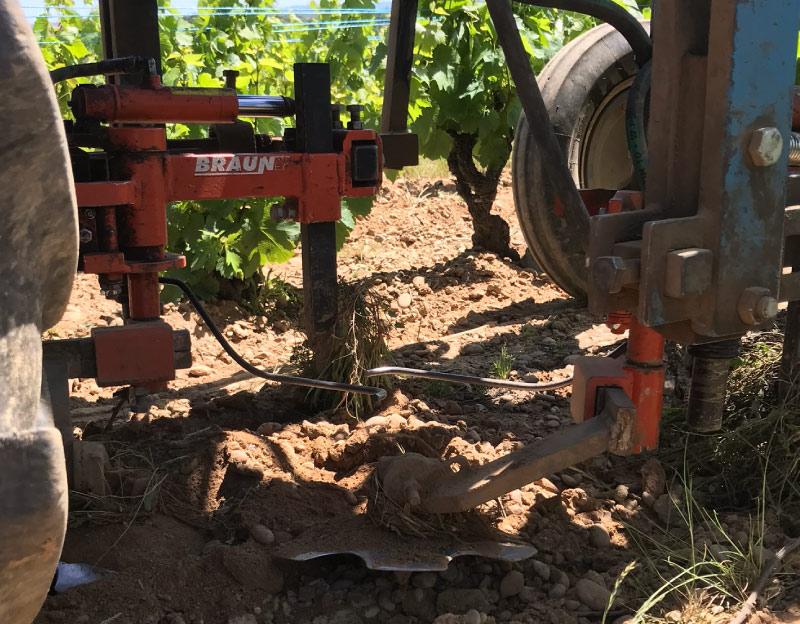 travail-manuel-terre-dans-les-vignes