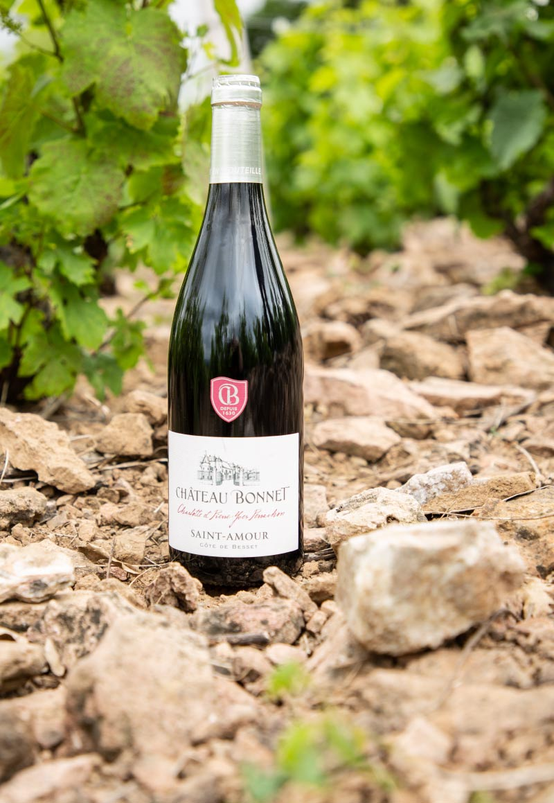 vin-saint-amour-cote-de-besset